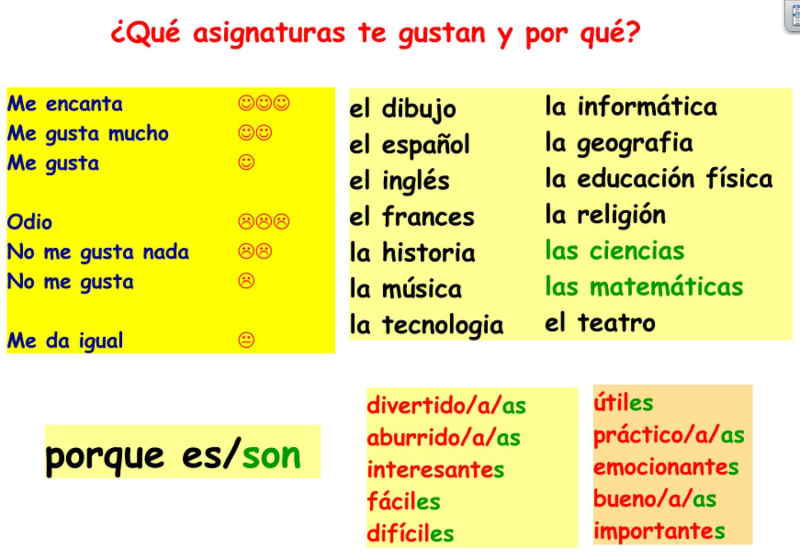Year 8 Spanish homework support
